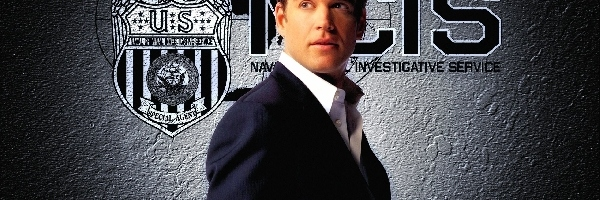 Michael Weatherly, Serial, Agenci NCIS